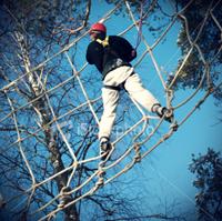 Man climbing in net